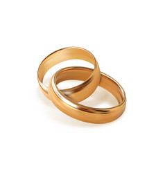Two golden wedding rings on transparent background vector