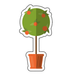cartoon tree pot decorative garden vector image vector image