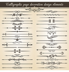Calligraphic vintage page decoration design vector image