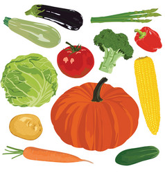 Autumn harvest on a white background vector