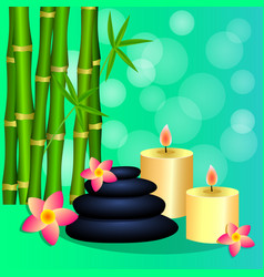 bamboo candles spa stones for banner leaflet vector image