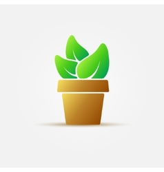 Bright houseplant icon vector image