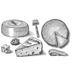 Cheese set slices mascarpone bleu de gex edam vector
