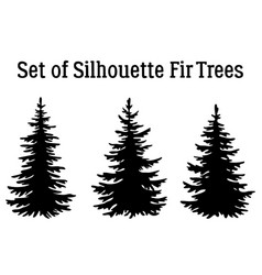 christmas fir trees silhouettes vector image