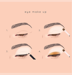 eye make up tutorial how to apply eyeshadow vector image