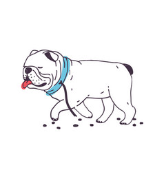 Funny escaped dog walking with torn leash vector