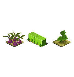 garden plants and green fence game user interface vector image