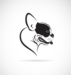 Image of an bulldog vector