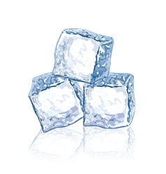 Object chunks of ice vector