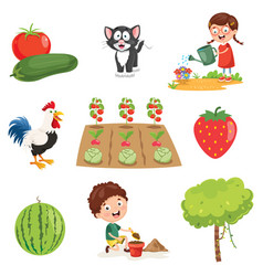 of farm things vector image