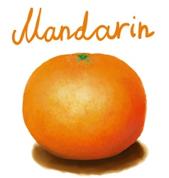 Painted mandarin vector