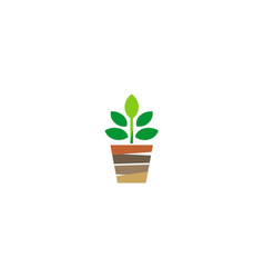 Plant seed logo vector