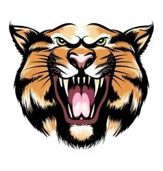 Roaring tiger head vector
