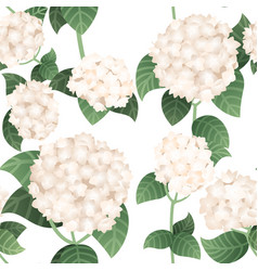 Seamless pattern white hydrangea flowers with vector