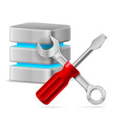 database icon with tools on white vector image