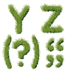 Green Grass Alphabet Y Z vector image