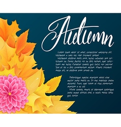 background with autumn leaves dahlia flowers and vector image