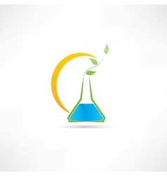 Experience on plants icon vector