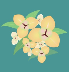Flower lumdun vector