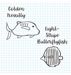 Golden trevally and butterflyfish sketch vector