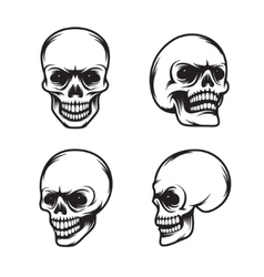 set vintage style skulls in four view plans vector image