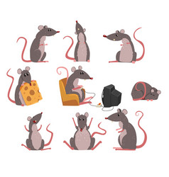 Cute grey mouse set funny rodent character in vector