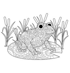 Frog on a lily in the swamp coloring book for vector