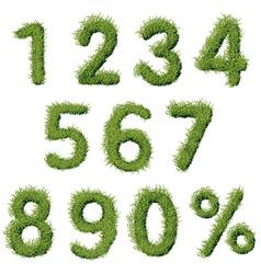 Green Grass Alphabet Numbers Set vector
