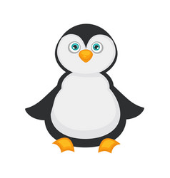 Penguin baby with big blue eyes and plump belly vector