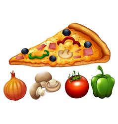 Slice of pizza and ingredients vector image