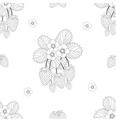 strawberry and flower outline on white background vector image