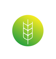 wheat icon linear vector image