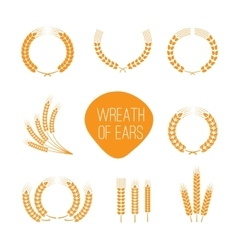 Wreaths of wheat ears vector