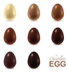 Set of chocolate eggs on white vector image