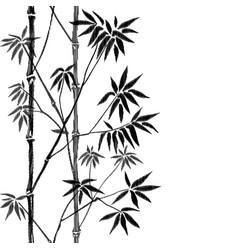 bamboo seamless vertical embroidery border vector image vector image