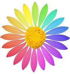 A rainbow colored flower vector