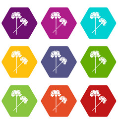 carnation icon set color hexahedron vector image