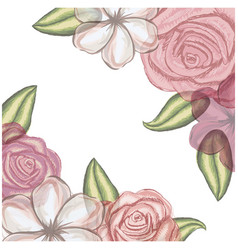 colorful floral background of flowers in vector image