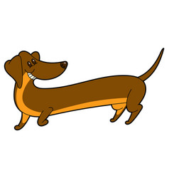 Cute cartoon long dachshund vector