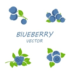 Flat blueberry icons set vector