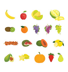 fruit collection with various kind of fruits and vector image
