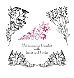 Hand drawing decorative floral elements vector