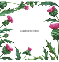 Square border from thistles vector