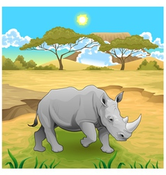 African landscape with rhinoceros vector image