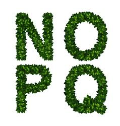 Alphabet nopq vector image