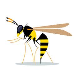 Biting wasp vector