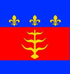 Flag of montauban in tarn-et-garonne of occitanie vector