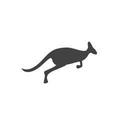 Kangaroo logo template vector