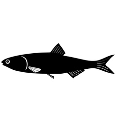 Silhouette anchovy vector