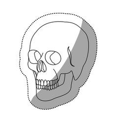 white figure skeleton of the human skull icon vector image